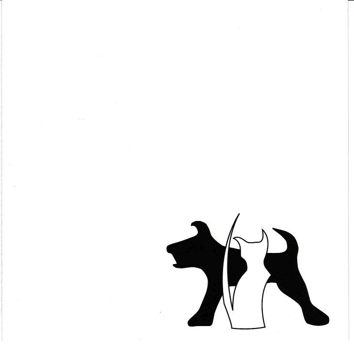 funkaholishdecision-tango